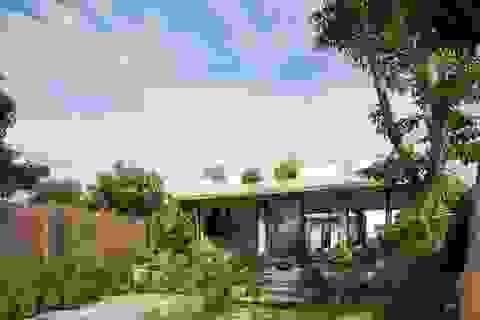 Choáng ngợp nhà vườn rộng 560m2 đẹp bình yên như làng quê Bắc Bộ thu nhỏ