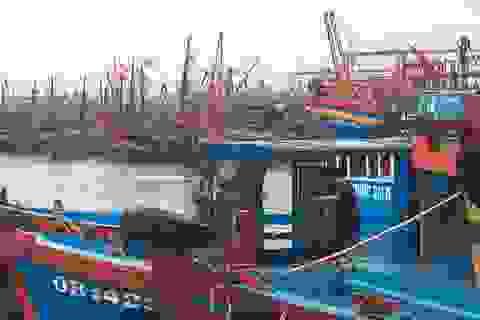Quảng Bình: Di dời hơn 100 hộ dân để phòng chống bão số 13