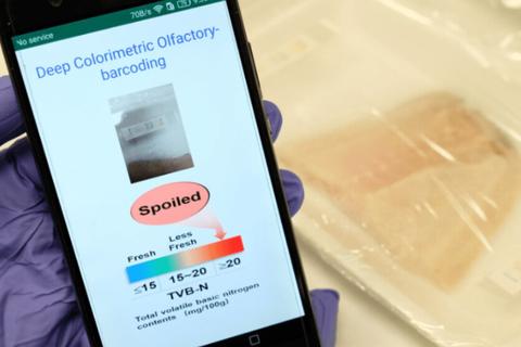 """Công nghệ """"mũi điện tử"""" giúp AI 'ngửi' được thực phẩm"""