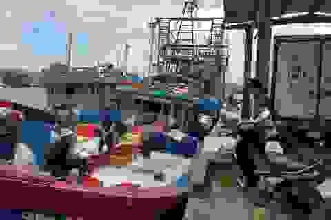 Khánh Hòa: Ngư dân hối hả vươn khơi Trường Sa sau bão số 13
