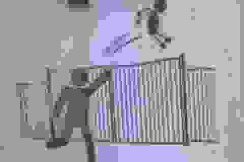 Trường học Pháp cấm phụ huynh... ném con qua tường rào