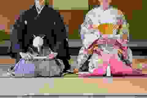 Vì sao người Nhật xưa luôn giữ bên mình một chiếc quạt gấp?