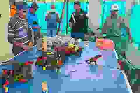 Trốn hải quan, nhóm buôn lậu nhét gần 80 con vẹt quý hiếm vào chai nhựa