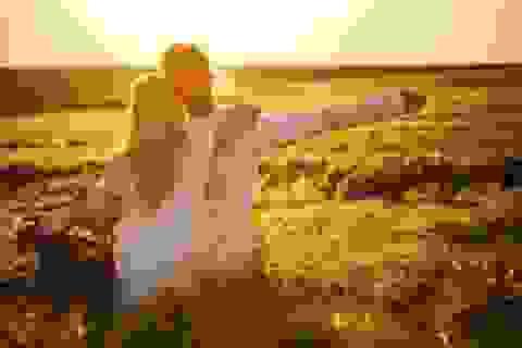 Vợ chồng có 4 biểu hiện này, buông tay càng sớm càng tốt
