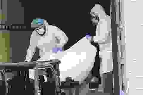 Mỹ: 650 thi thể nạn nhân Covid-19 mắc kẹt trên xe đông lạnh suốt 7 tháng