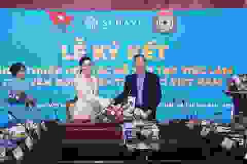 Vận động viên Việt Nam đón nhận tin vui đặc biệt