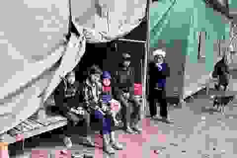 Nghệ An: Phân bổ hơn 303 tấn gạo cứu đói cho người dân bị thiên tai
