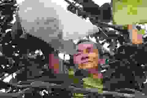 Nông dân Hoài Ân đổi đời nhờ trồng bưởi da xanh