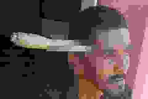 Người đàn ông bị bắn 7 phát đạn, 3 năm sau bị dao đâm xuyên đầu