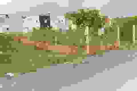 TPHCM: Hơn 1.000 hồ sơ sai phạm đất đai ở huyện Hóc Môn