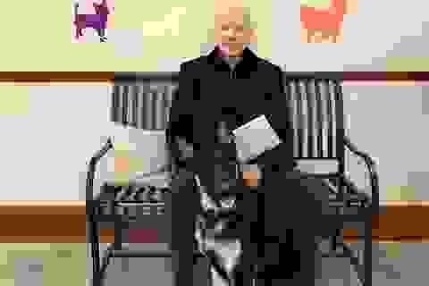 Ông Biden chấn thương do trượt ngã khi chơi với thú cưng