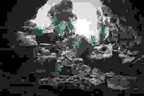 """Quảng Bình """"vượt khó"""" sau đại dịch và mưa lũ để khởi động mùa du lịch mới"""