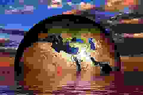 Thảm họa trên Trái đất là không thể tránh khỏi?