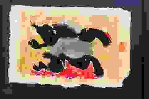 """""""Vùng sống"""" - triển lãm đầu tiên kết hợp giữa lụa với giấy giang"""