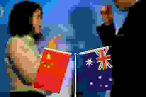 Chính trị gia 19 nước kêu gọi cứu rượu Australia sau đòn thuế từ Trung Quốc