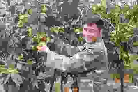 """Những """"nông dân triệu phú"""" trẻ tuổi tỉnh Nghệ An"""