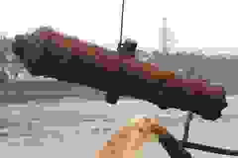 Phát hiện súng thần công Minh Mạng bên bờ sông Hồng