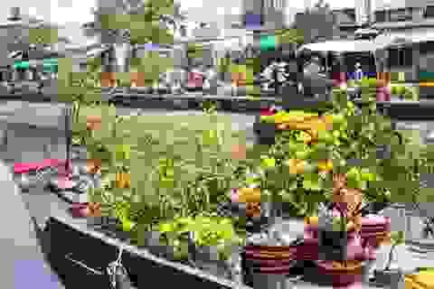 Ghe, xuồng chở đầy hoa nô nức cập bến sông Cần Thơ