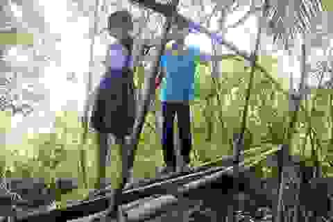 """""""Ngày nào cũng qua cây cầu này, con rất sợ bị rơi xuống kênh!"""""""