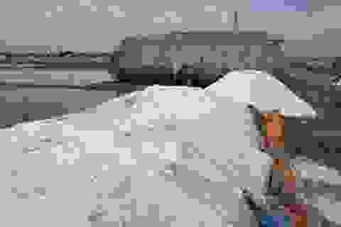 Kiến nghị Trung ương mua tạm trữ 92.000 tấn muối