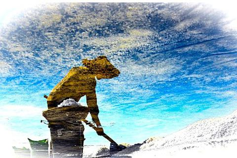 """""""Bóng muối"""" trên cánh đồng muối ở Quảng Nam"""