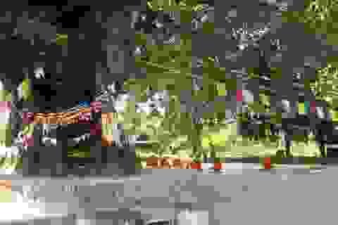 Tìm về nơi Đức Phật chào đời!