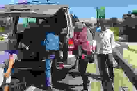 Liên tiếp phát hiện tài xế xe khách dùng bằng lái xe giả