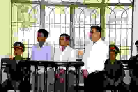 Xét xử vụ án trốn thuế hàng chục tỉ đồng ở công ty nông dược Điện Bàn