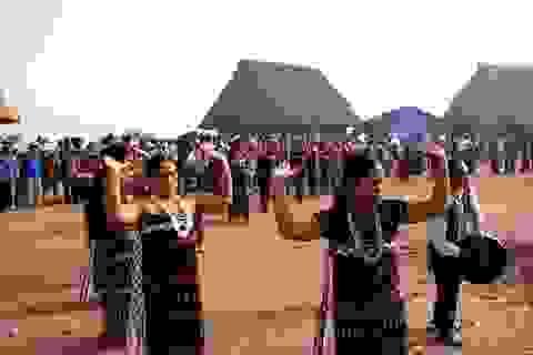 Festival Di sản lần thứ VI sẽ được giao cho doanh nghiệp du lịch tổ chức