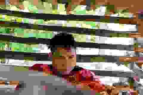 Cảnh sống khốn cùng của nam thanh niên bị nhốt trong cũi gỗ