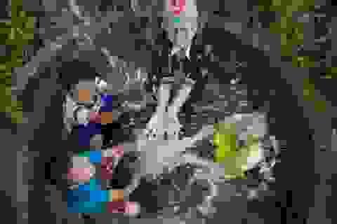 Quảng Trị: Độc đáo giếng cổ hàng trăm năm tuổi ở động Chùa