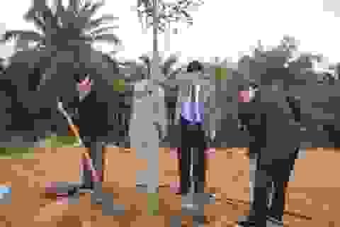Quảng Trị: Trồng cây xanh trên các tuyến phố, công viên dịp đầu Xuân