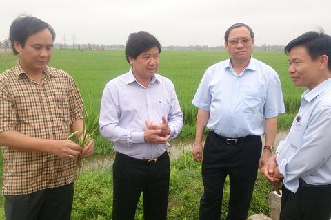 Cân đối nguồn nước tưới, chuyển đổi cây trồng để ứng phó với khô hạn