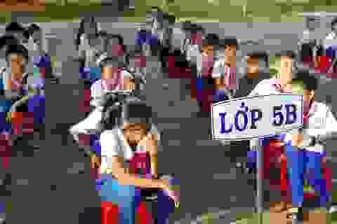 """Quảng Trị: Học sinh tiểu học bị """"tra tấn"""" bởi chất thải từ trại lợn nằm cạnh trường"""