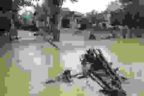 Nước lũ rút dần, người dân gạt nước mắt dọn dẹp nhà cửa