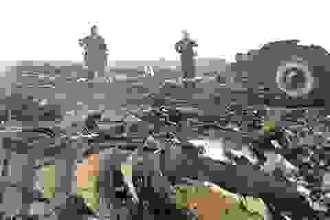Đức: Phe nổi dậy Ukraine bắn rơi MH17 bằng tên lửa của chính phủ