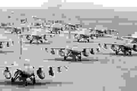 Tập đoàn quốc phòng Anh kiện Hàn Quốc vì dừng nâng cấp phi đội F-16