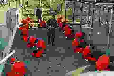 Tổng thống Mỹ cam kết đóng cửa nhà tù Guantanamo