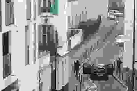 Súng nổ chát chúa tại tòa báo Paris