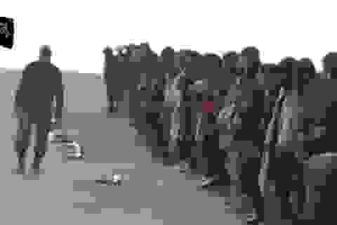 Sự tàn bạo của tổ chức Hồi giáo cực đoan IS