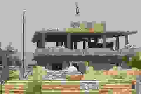 IS kéo cờ đen trên thành cổ Palmyra