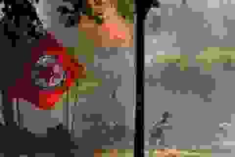 Nữ sát thủ đánh bom liều chết đẫm máu tại Thổ Nhĩ Kỳ, 28 người thiệt mạng