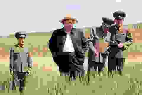 Ông Kim Jong-un tăng cân vì sushi và rượu vang đắt tiền
