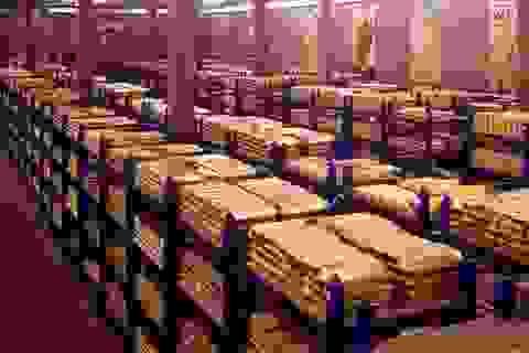 10 quốc gia dự trữ vàng lớn nhất thế giới