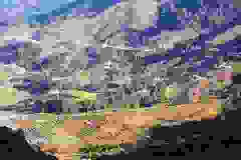 Huyện nghèo nhất xứ Thanh không xin gạo cứu đói dịp Tết