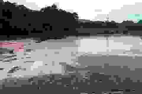 Vụ cá chết trên sông ở Thanh Hóa: Do nước thải của cơ sở bột giấy