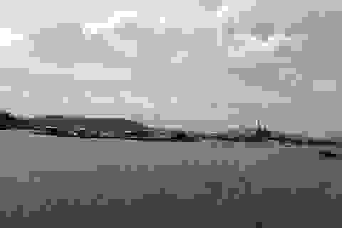 Xuất hiện cá tự nhiên chết trên biển Thanh Hóa