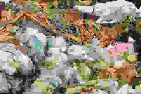 Kinh hoàng phát hiện thi thể nữ giáo viên trong bao bì ở bãi rác