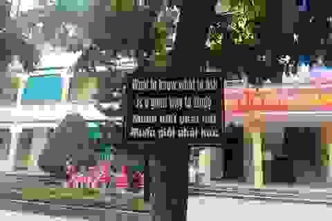 Độc đáo mô hình dạy tiếng Anh ở ngôi trường tiểu học xứ Thanh