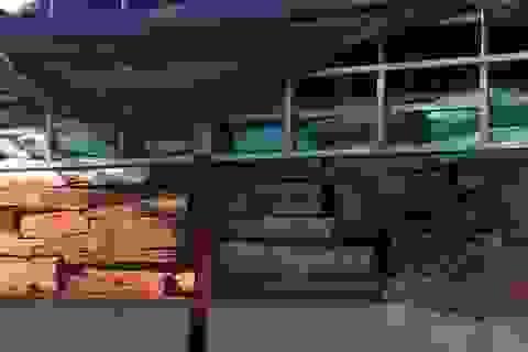 Phát hiện 2 vụ vận chuyển trái phép số lượng lớn gỗ quý